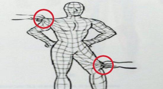 筋膜イメージ