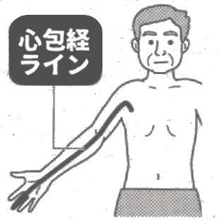 爪楊枝鍼2