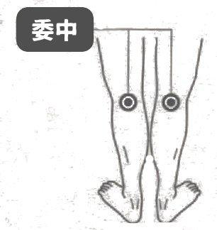 爪楊枝鍼3
